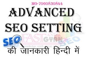 advanced seo setting
