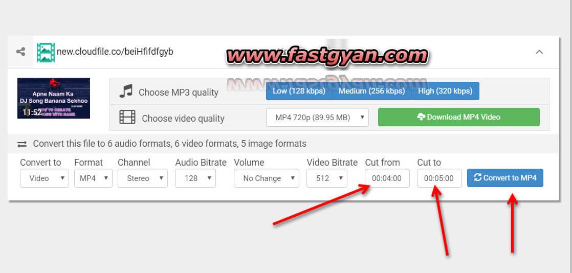 crop video online download